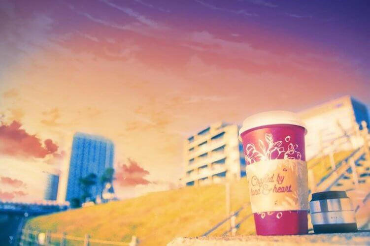 everfilter-4