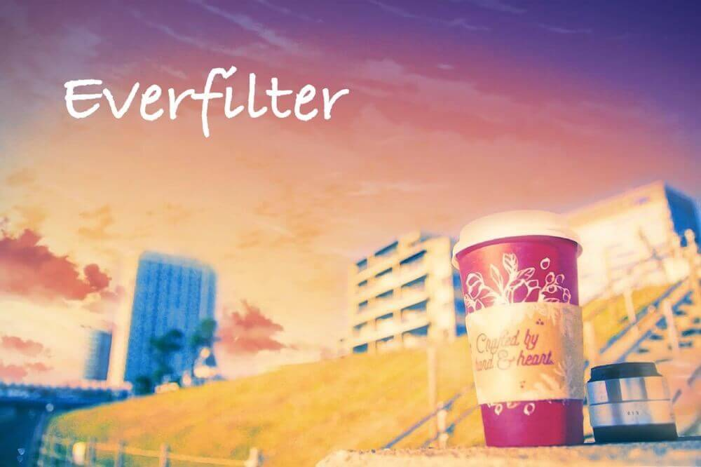 everfilter-5