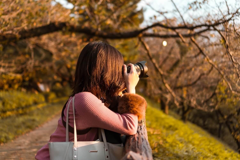 Yotsuya photo 4