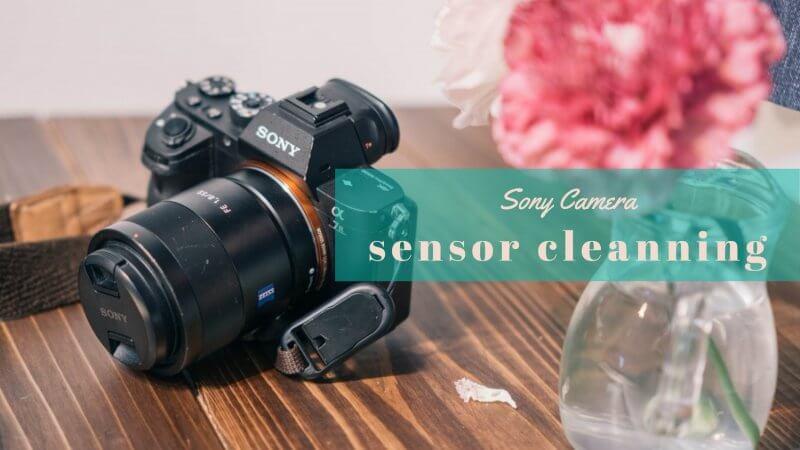Sonyのセンサークリーニングのメイン画像