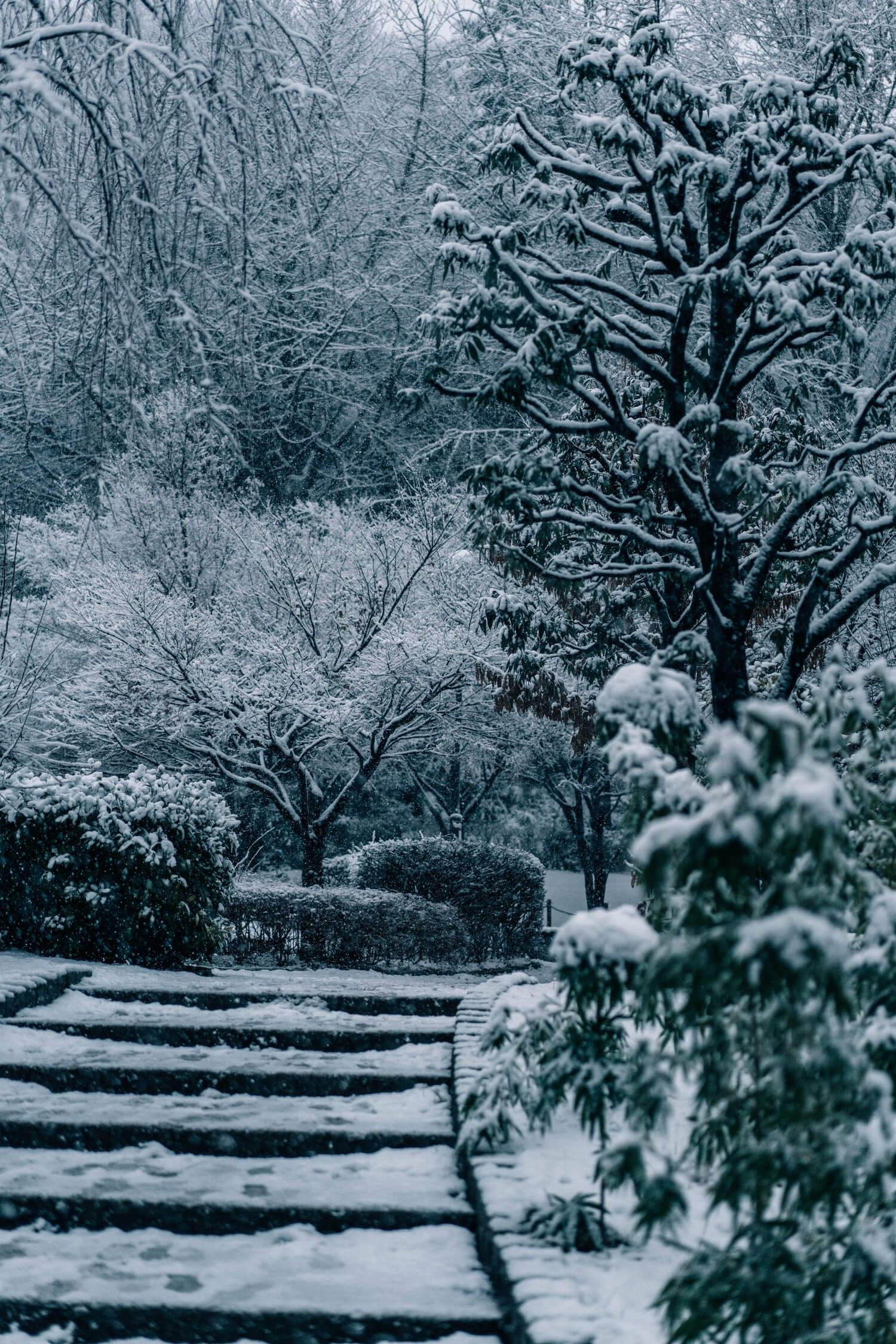 公園も雪でいっぱいでした。