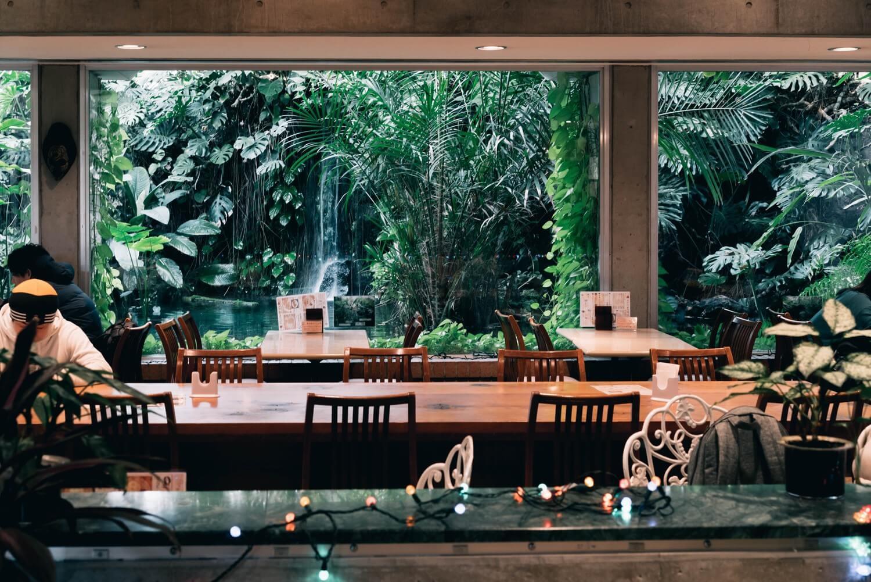 夢の島熱帯植物館の中にあるカフェ