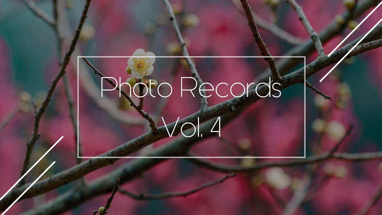 【湯河原】景色一面が梅の花!2~3月は湯河原梅林で「梅の宴」を楽しむ | Photo Records Vol.4