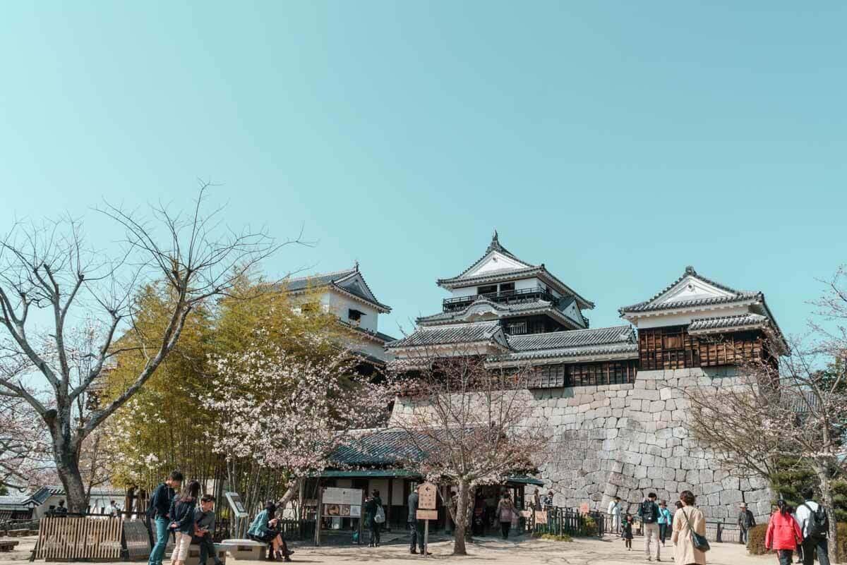 大迫力の松山城