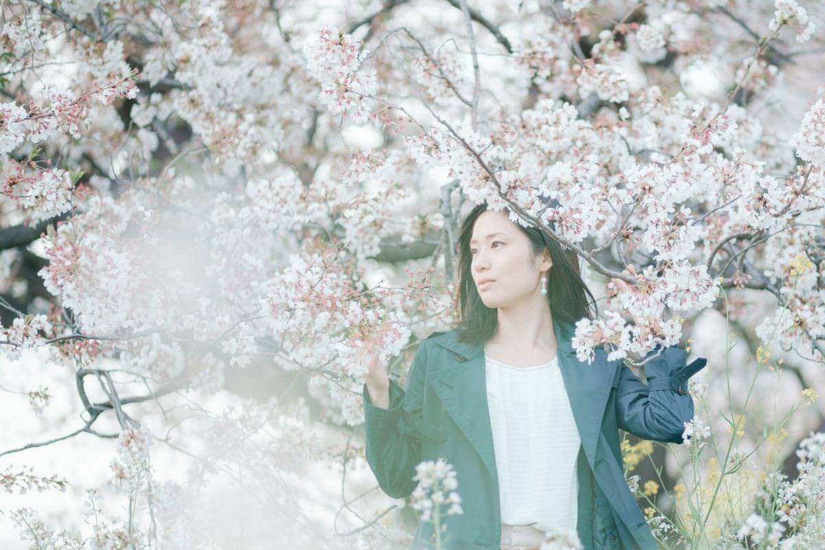 前ボケを入れた桜の写真