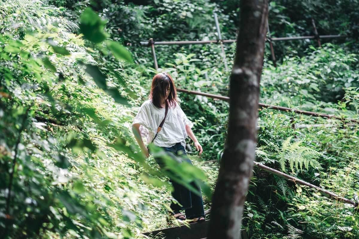 森の中にいることさん