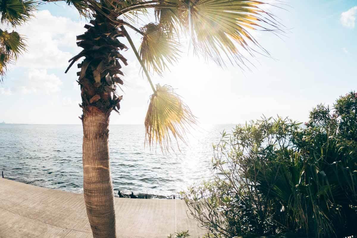 野外プールから見れる最高の外の景色