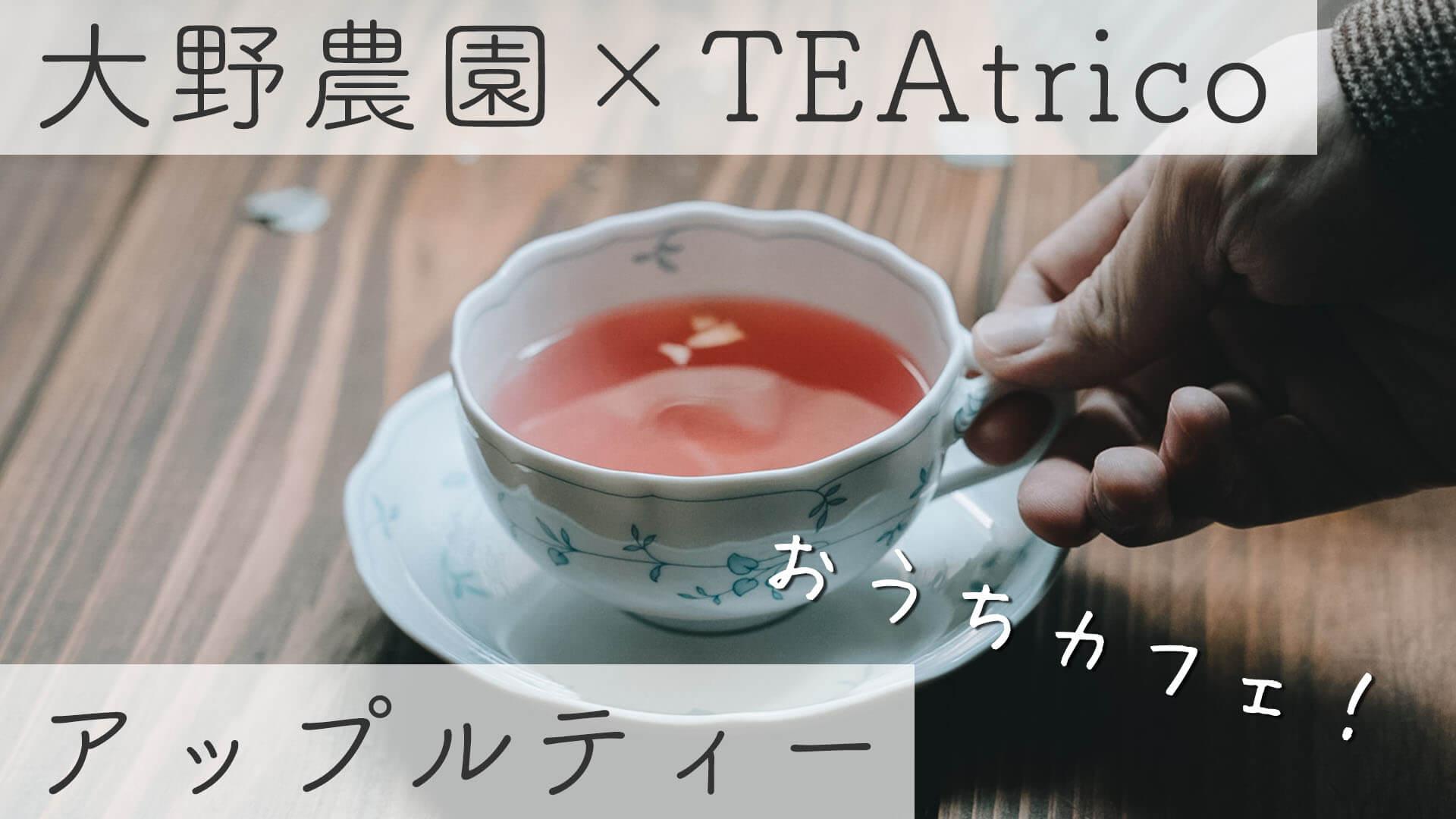 【おうちカフェ】大野農園×TEAtricoのアップルティー